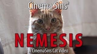 The Nemesis Of Cinema Sins: A Cinema Sins Cat Video