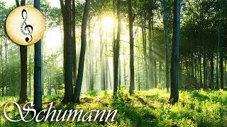 Schumann Classical Music for Studying, Concentration, Relaxation | Study Music | Piano Music