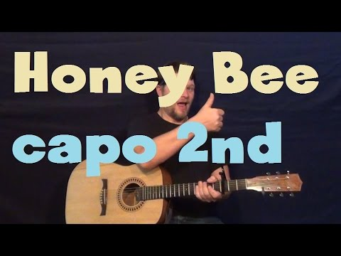 Honey Bee Seahaven Easy Strum Guitar Lesson How to Play Tutorial Capo 2nd Fret