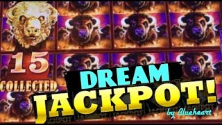 ★MUST WATCH★ MASSIVE JACKPOT! BUFFALO GOLD slot machine HANDPAY! ( WONDER 4 WONDER WHEEL)