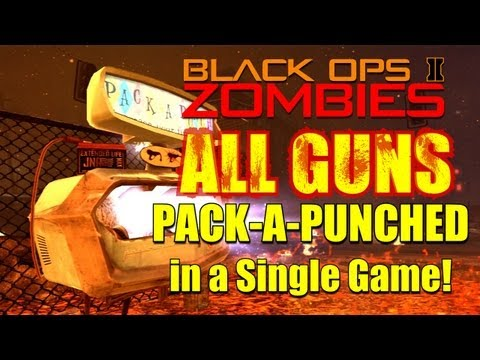 All Guns Pack a Punched in a Single Game! | Black Ops 2 Zombies