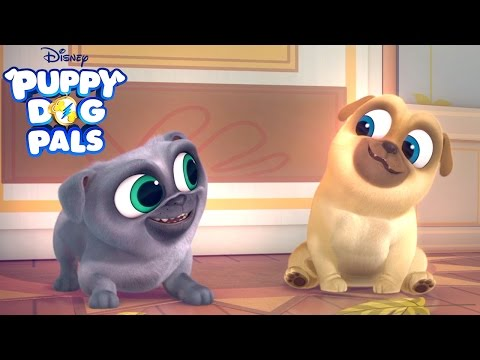 Series   Puppy Dog Pals  Disney Junior
