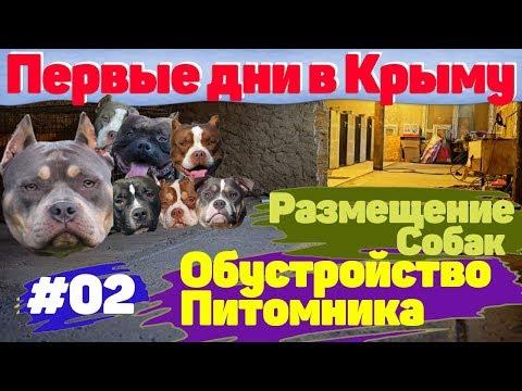 Переезд в Крым. Первые дни. Обустройство Питомника.  #02