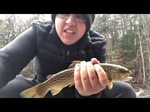 Fishing At Kent Falls For Trout