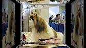 Интернет-магазин «четыре лапы» предлагает выгодно купить домики и лежаки для собак всех пород и размеров с доставкой на дом по москве и.
