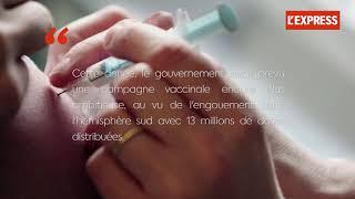 Grippe : entre 70 et 90% des pharmacies sont en rupture de stock de vaccins