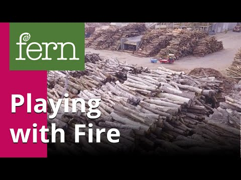 Playing with Fire: Europe's bioenergy future