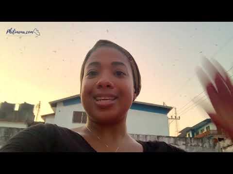 BATS!!! In Liberia 🇱🇷