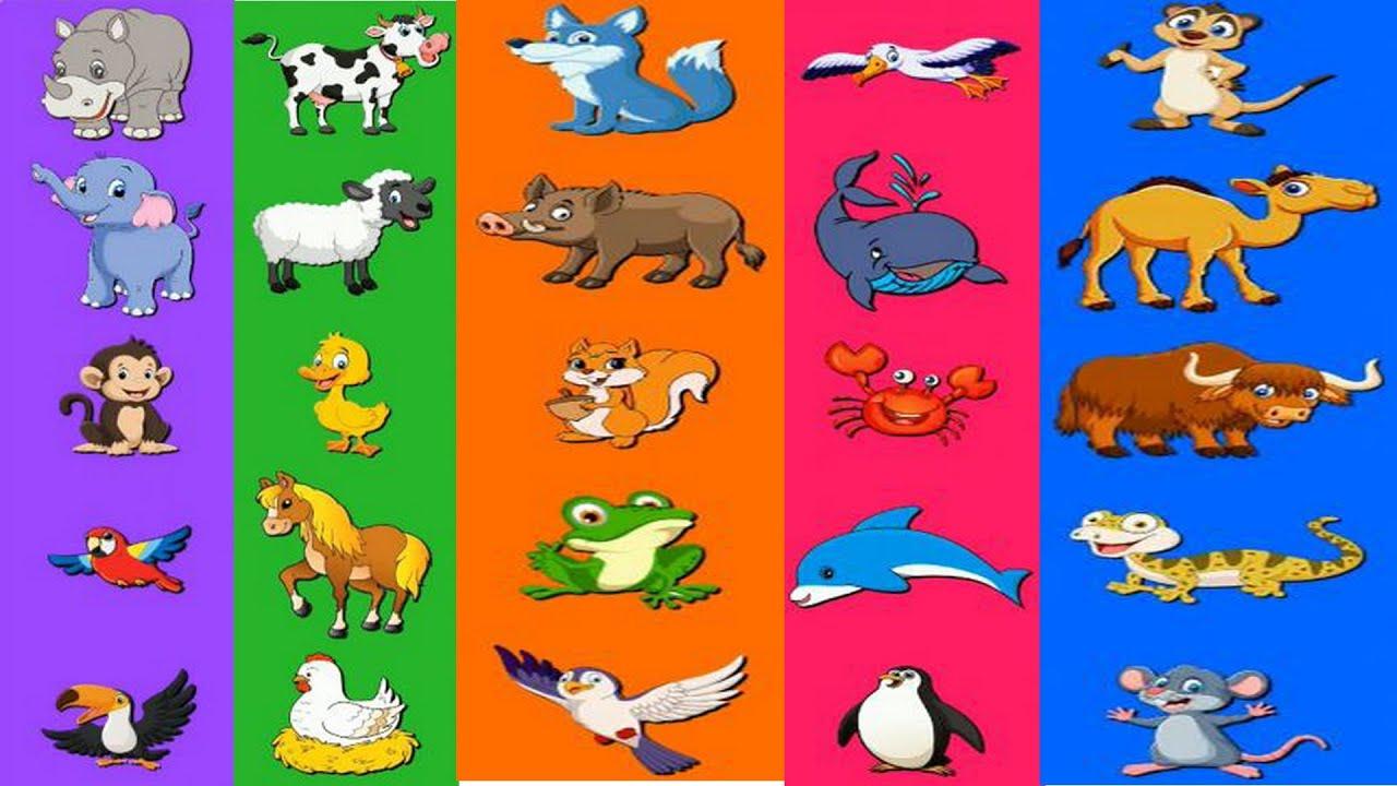 домашние животные картинки со звуками животных извиняюсь
