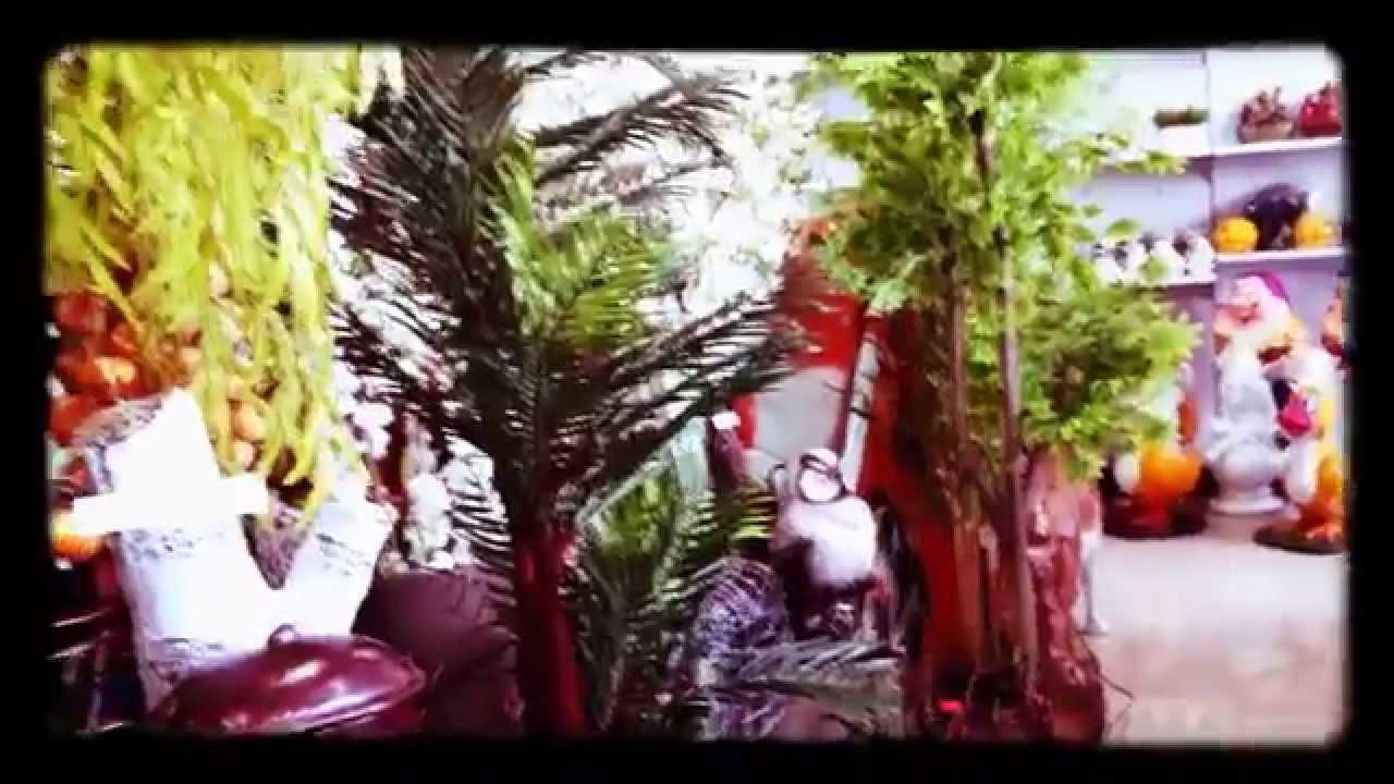 Купить бонсай в санкт-петербурге можно в нашем интернет магазине по доступной цене. Если вы сделаете заказ на бонсай, который есть в наличии, до 16:00, то мы привезем вам растение в этот же день по любому указанному адресу. Дерево бонсай купить недорого можно во время проведения.