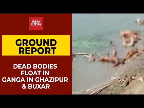 Bihar: More Dead Bodies Found Floating In Ganga River In Ghazipur & Buxar| India Today Ground Report