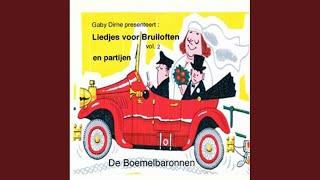 Medley 4: De Dochter Van De Slager/Kom Van Dat Dak Af/Doe