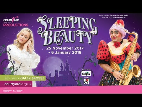 Sleeping Beauty - The Courtyard's Christmas Pantomime 2017