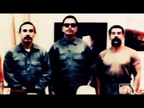 Etyifg Best Documentary - Gangland - Gangland Undercover Erty