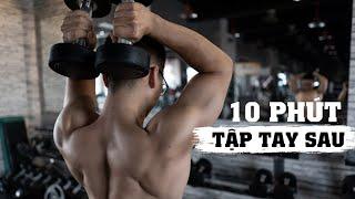 10 Phút Tập Tay Sau Cục Súc | Triceps Blasting Workout | SHINPHAMM