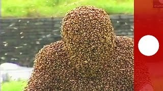 Recouvert d'abeilles pendant plus d'une heure, il décroche un record mondial