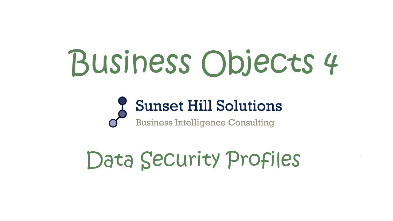 Business Objects 4x Information Design Tool Data Security Consulting Profiles