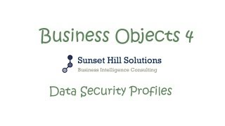 Business Objects 4x - Information Design Tool - Data Security Profiles
