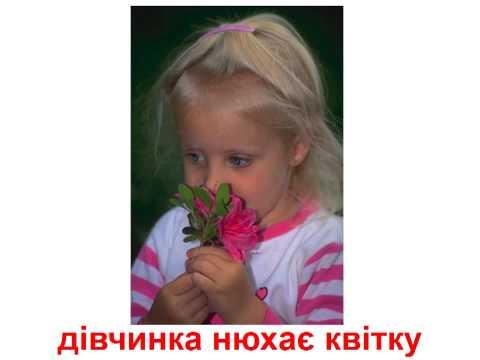Элитные индивидуалки Москвы!