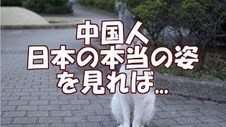 【海外の反応】「本当の日本を見てもらおう!」中国人 媚びてるわけでは...