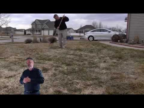 Spring Lawn Care : Recovery Program Step #1