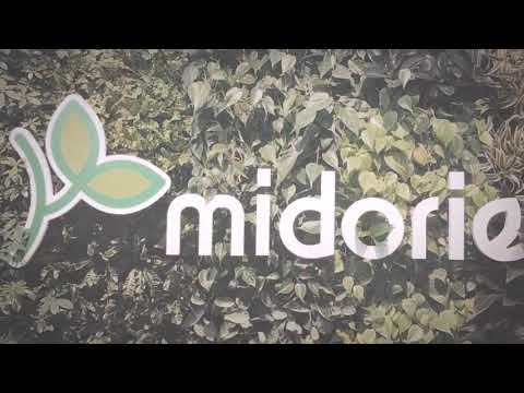 Midorie Malaysia Projects Video