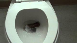 Poop won't flush