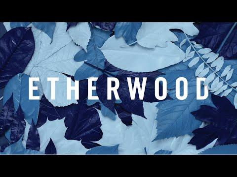 Etherwood - Caption