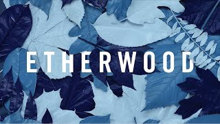 Etherwood - Caption