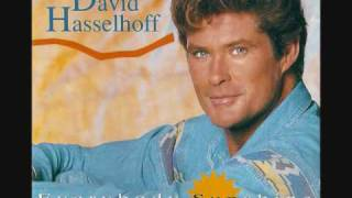 Watch David Hasselhoff Everybody Sunshine video