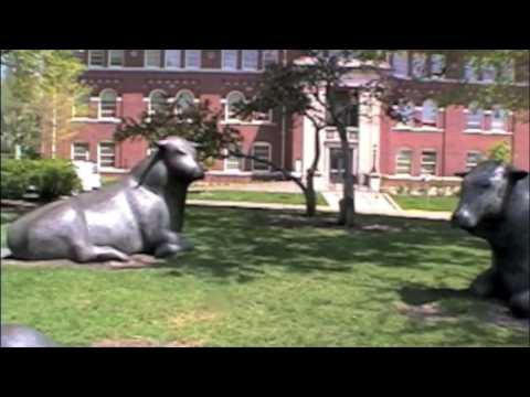 Apple Campus Tour - University of Minnesota