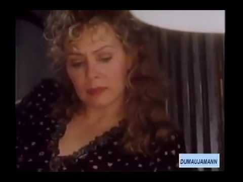 A Stranger in Town 1995 Jean Smart, Gregory Hines