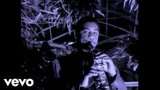 Branford Marsalis - Royal Garden Blues