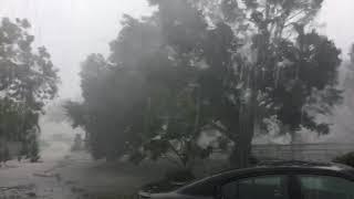 הוריקן אירמה פורט מייר קליפורניה