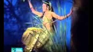 Tere sang pyar me nahi chorna(Nagin)