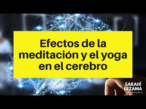 Efectos de la meditación y el yoga en el cerebro.
