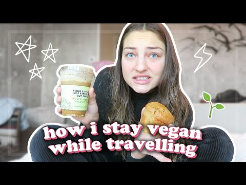 Traveling While Vegan and eight Methods to Succeed