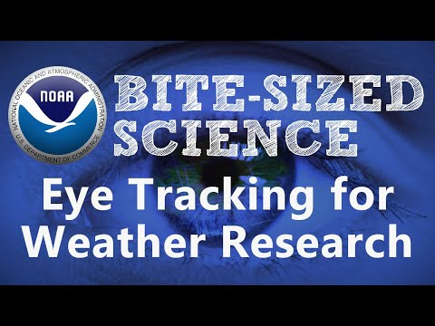 Bite-Sized Science: Eye Tracking for Weather Research