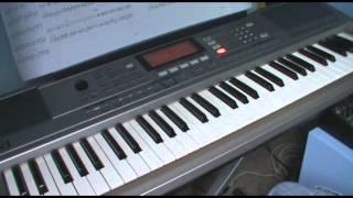 The Serpentine Offering (Dimmu Borgir keyboard cover)