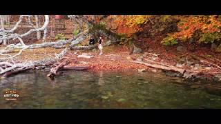 4K ドローン空撮【中禅寺湖・中禅寺】世界遺産 日光市NIKKO Drone Japan