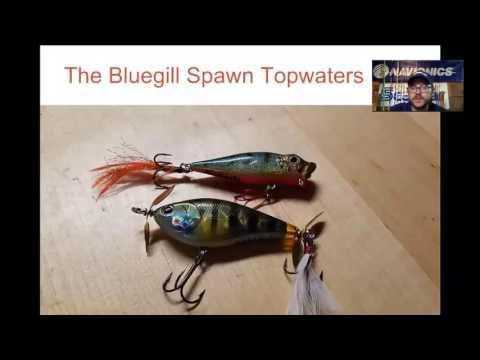 Webinar: Post Spawn Bass Tricks with Tyler Brinks