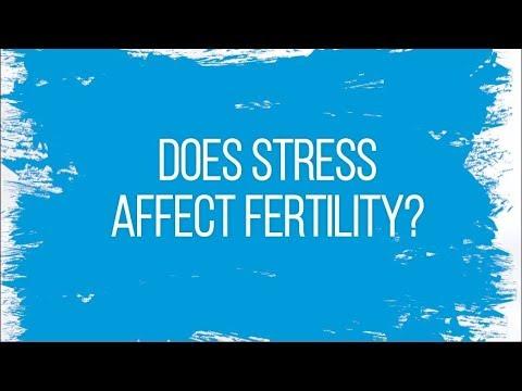 Does Stress Affect Fertility?