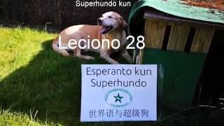Lernu Esperanton kun Superhundo! – Leciono 28