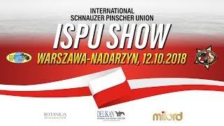 Wystawa Międzynarodowego Klubu Sznaucera i Pinczera