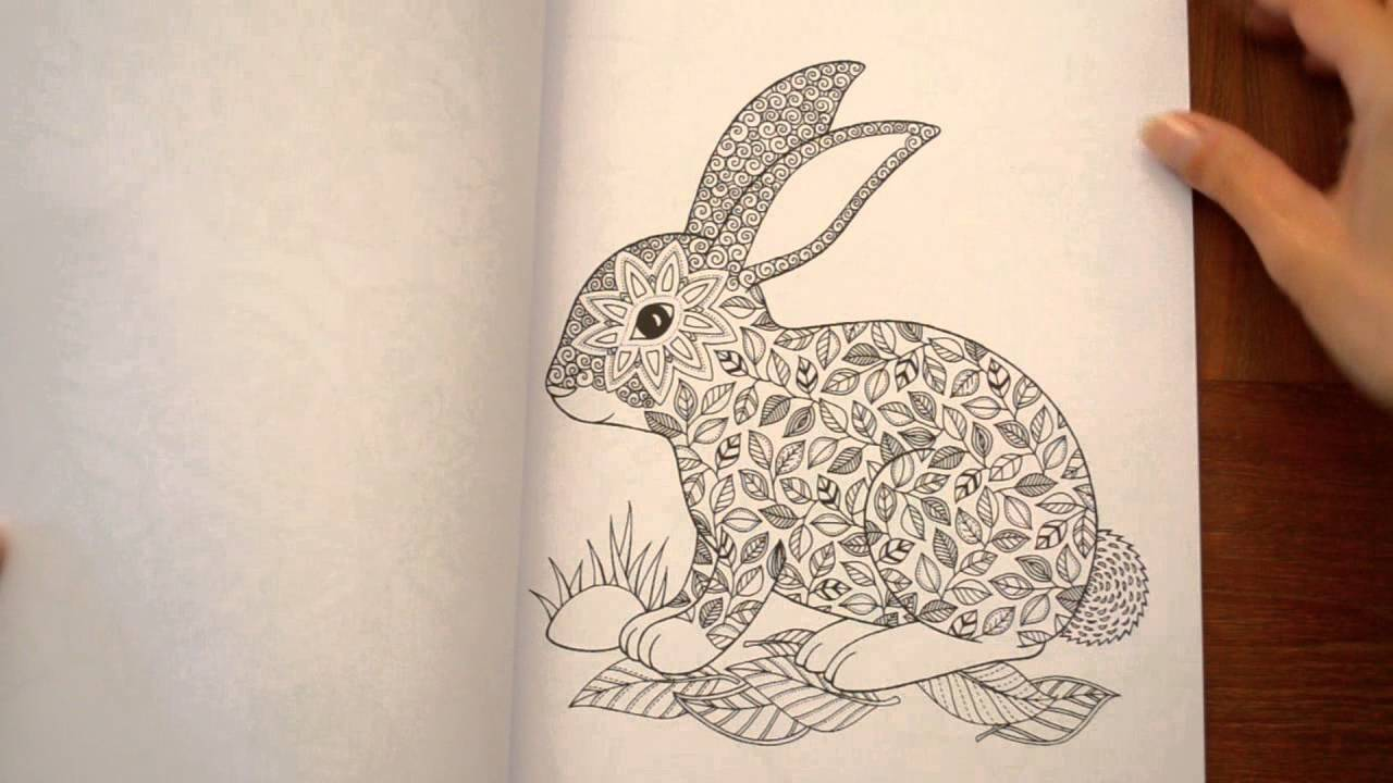 Libro Para Colorear El Secreto Del Bosque
