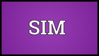 SIM Meaning