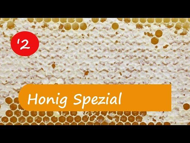Waldhonig  -  Wissen um diesen dunklen und flüssigen Honig