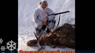 Охота на Лося под Вышним Волочком  10 12 2016