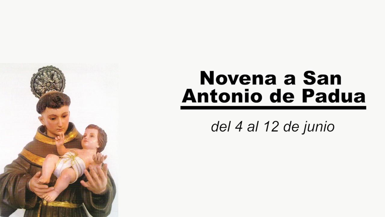 Novena A San Antonio De Padua D 237 A Primero Del 4 Al 12