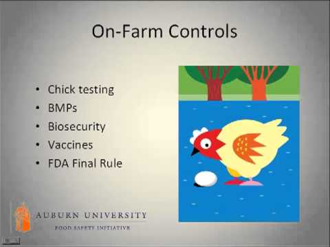 Dr. Patricia Curtis - Food Safety Issues for Salmonella in Eggs and Egg Products